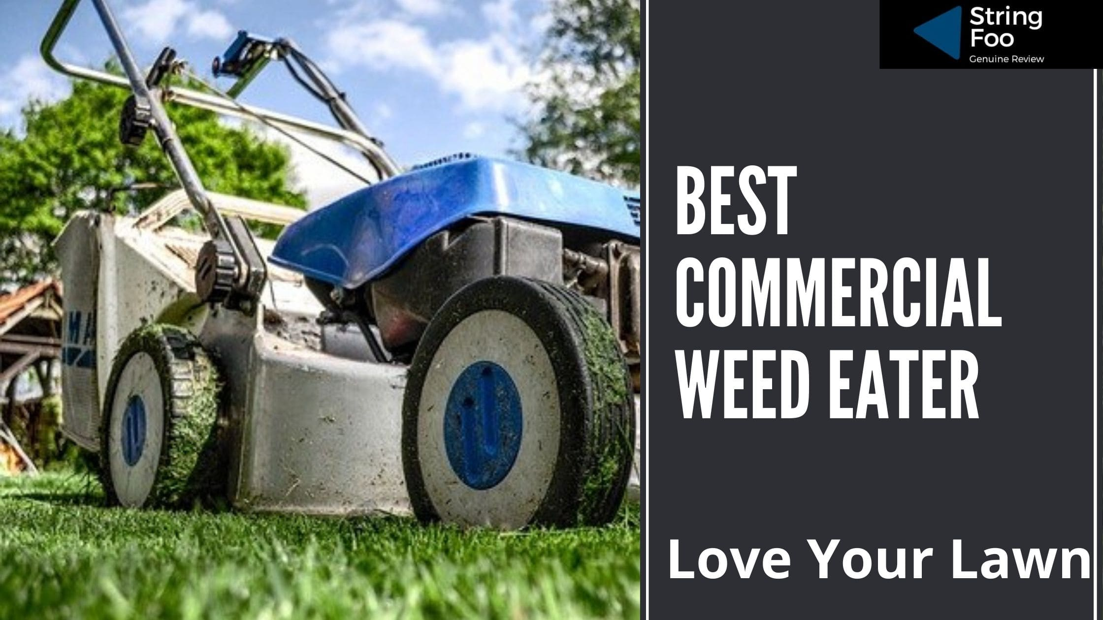 Best Commercial Weed Eatee
