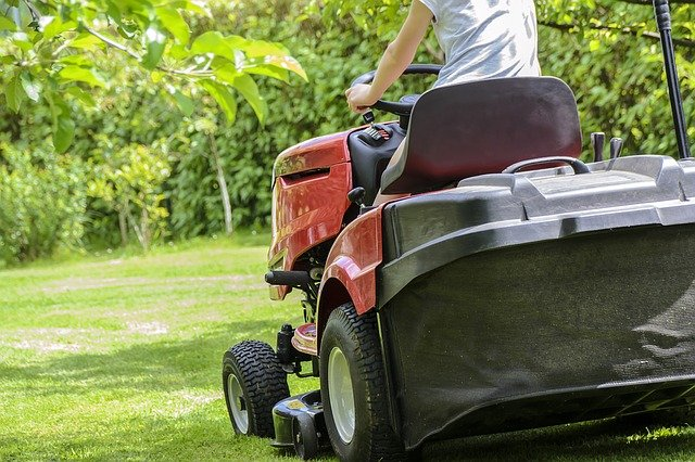 Best Commercial Weed Eater
