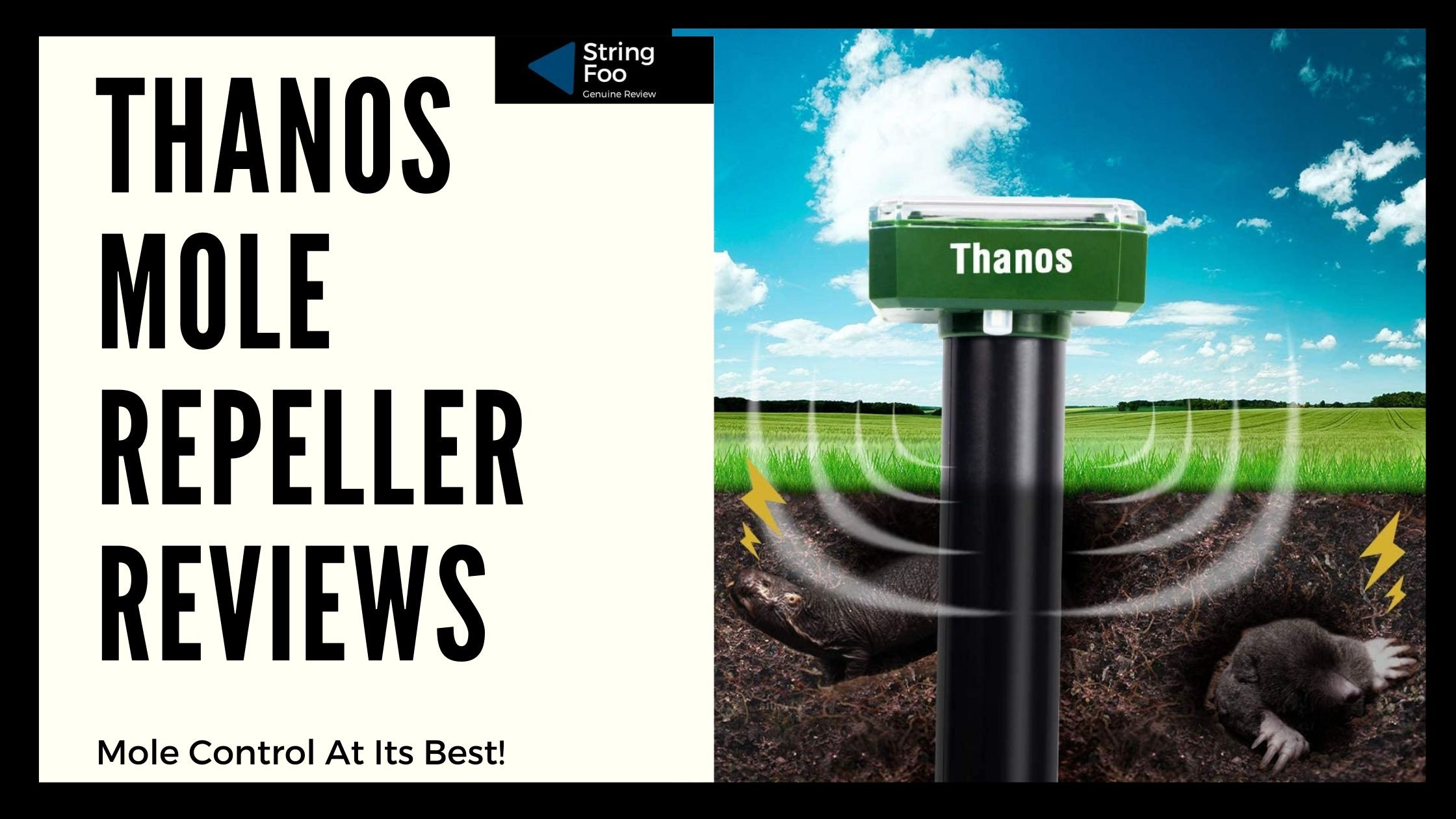 Thanos Mole Repeller Reviews